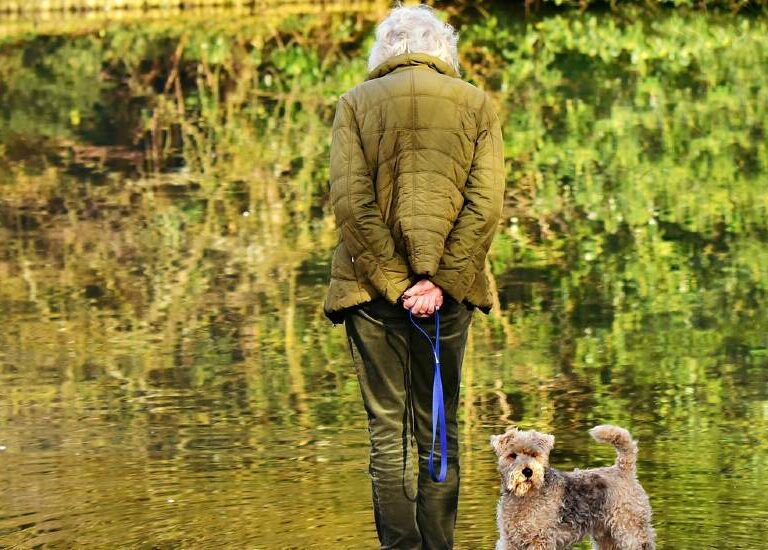 Are You Too Old to Get a Dog? Age Alone Is Not a Factor