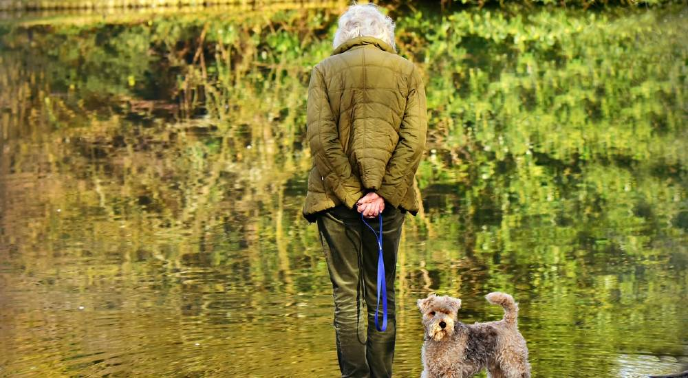 are you too old to get a dog | older lady with a dog