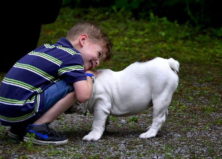 Are Dogs Good for Kids?  You Bet They Are and Here's Why