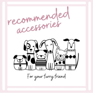 Recommended Dog Accessories
